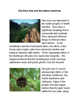 The Pine Tree and the Native American