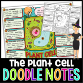 Plant Cells and Organelles Doodle Notes | Science Doodle Notes