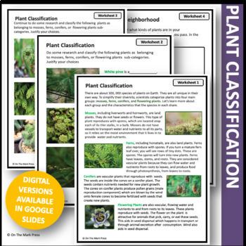 The Plant Kingdom Lesson Plan Grade 6