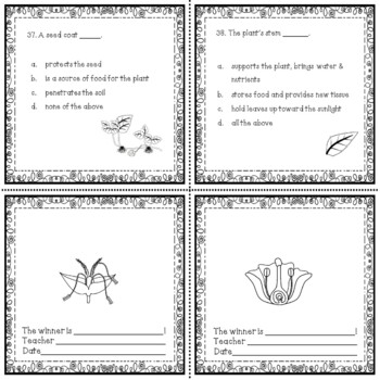 The Plant Kingdom Science Passages and Questions Activity in black white No Prep