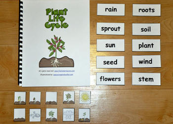 The Plant Life Cycle Adapted Book