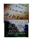 The Poisonwood Bible In Depth Literature Study