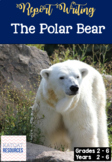 The Polar Bear - Informational Writing