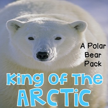 Polar Bear - King of the Arctic