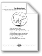 The Polar Bear (Web Organizer)