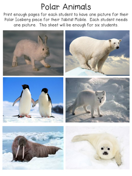 Polar Habitats Unit Common Core Aligned with Craftivities