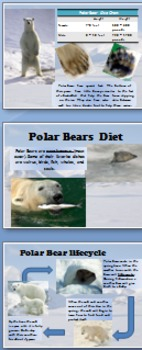 The Poles: Arctic & Antarctica (power point)