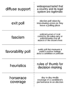 The Politics of Public Opinion Vocabulary Flash Cards for American Government