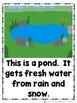 The Pond Bundle (2 Sight Word Books, 2 Colored Teacher Lap Books, Animal Cards)