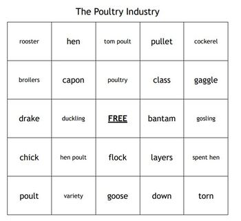 The Poultry Industry Vocabulary Bingo for an Agriculture Animal Science Course