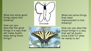 The Power of Revising and Editing:  Austin's Butterfly