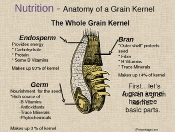 The Power of Whole Grains PowerPoint