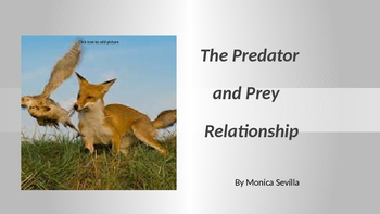 The Predator and Prey Relationship