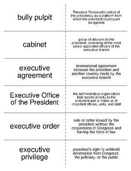 The Presidency Vocabulary Flash Cards for American Government
