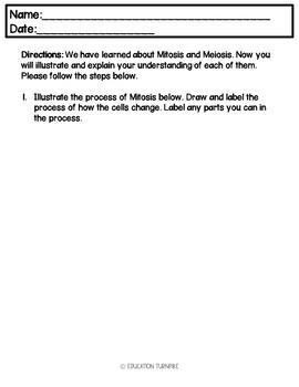 Cell Division Meiosis and Mitosis Exit Ticket