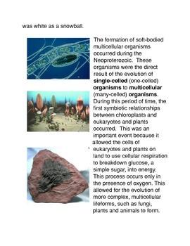 The Protozoic Eon Common Core Activity