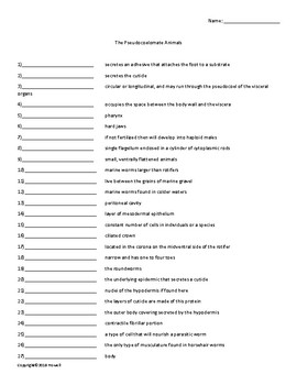 The Pseudocoelomate Animals Vocabulary Quiz or Worksheet for Zoology