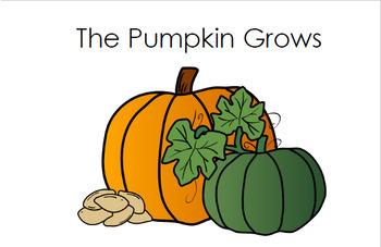 The Pumpkin Grows - Kindergarten - Level A Guided Reader - Pumpkin Life Cycle