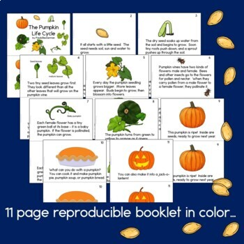 The Pumpkin Life Cycle Science Guided Reading Book