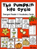 The Pumpkin Life Cycle Emergent Reader and Vocabulary Cards / Kindergarten