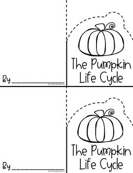 The Pumpkin Life Cycle {Foldable Fact Card}