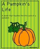 The Pumpkin Life Cycle Poem