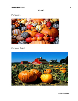 The Pumpkin Patch Lesson Plan