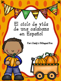 The Pumpkin Life Cycle Unit in Spanish