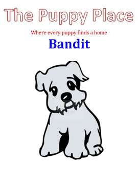 The Puppy Place - Bandit