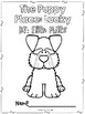 The Puppy Place: Lucky Novel Study