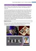 The Queen film by Frears-Teacher Text Guide & Worksheets