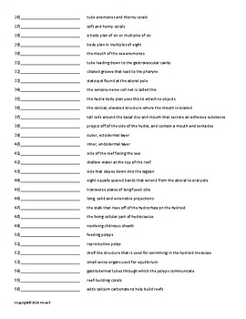 The Radiate Animals Vocabulary Quiz or Worksheet for Zoology