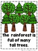 The Rainforest Bundle  (2 Sight Word Readers, 2 Lap Books, & Animal Cards)