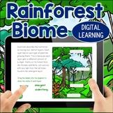 The Rainforest Habitat DIGITAL Interactive Learning BOOM Cards