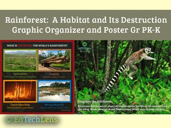 Rainforest - A Habitat and Its Destruction: Graphic Organizers for Grades PK-K
