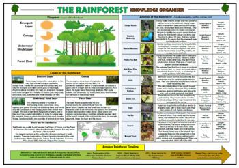 The Rainforest Knowledge Organiser