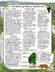 The Rainforest Nonfiction Close Reading Passage