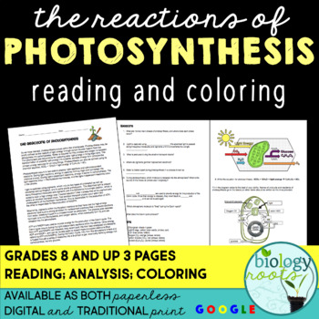 Photosynthesis Reading and Coloring