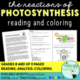 Reactions of Photosynthesis: Reading and Coloring- supports distance learning