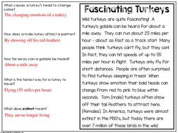 The Reading Spread {November Edition: Turkeys}