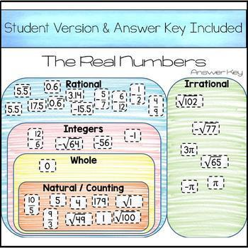 The Real Numbers Card Sort - Digital Version for 1:1 Classrooms