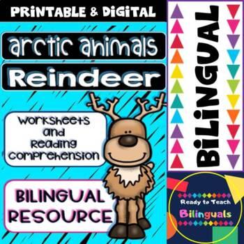 The Reindeer - Reading Comprehension and Worksheets - Bilingual