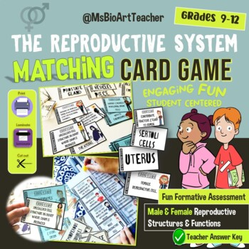 The Reproductive System-Matching Cards-High School