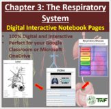The Respiratory System - Digital Interactive Notebook Pages