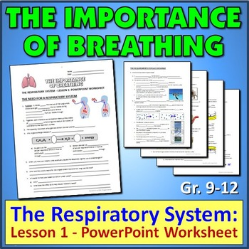 The Respiratory System:  Lesson 1 - PowerPoint Worksheet {Editable}