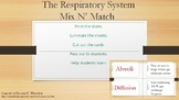 The Respiratory System - Mix N' Match Cards