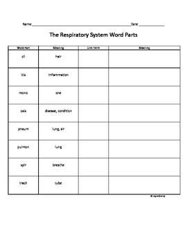 The Respiratory System Root Word Parts