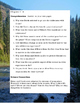 The River by Gary Paulsen ELA Novel Reading Study Guide Complete!