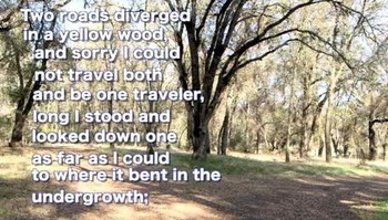 """Robert Frost """"The Road Not Taken"""" -- Clipped Classic Video (only)"""