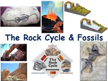 The Rock Cycle & Fossils lesson flashcards task card study
